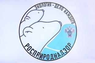 Стартовал прием заявок на участие в международной детско-юношеской премии «Экология – дело каждого!»
