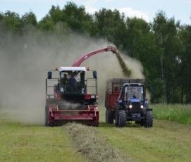 В Вольском районе убрано более 90% зерновых и зернобобовых культур